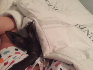 Lucas har hållit mig sällskap i sängen. ❤️
